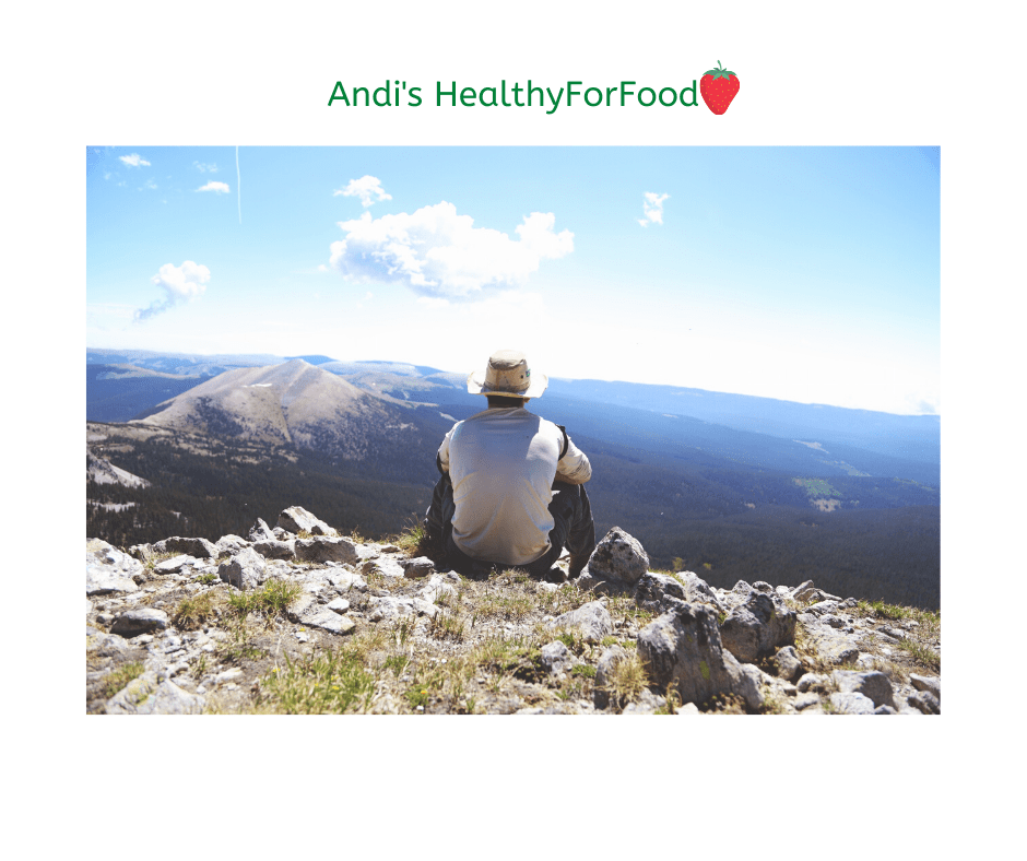 Andis HealthyForFood 2